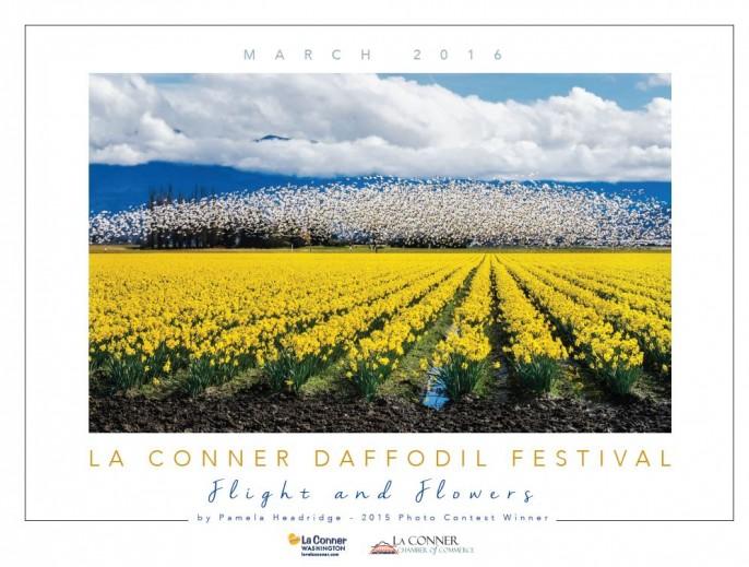 daffodil_festival_2016
