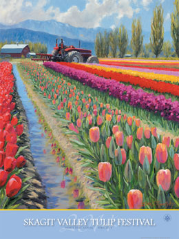 Image result for skagit valley spring tulip festival